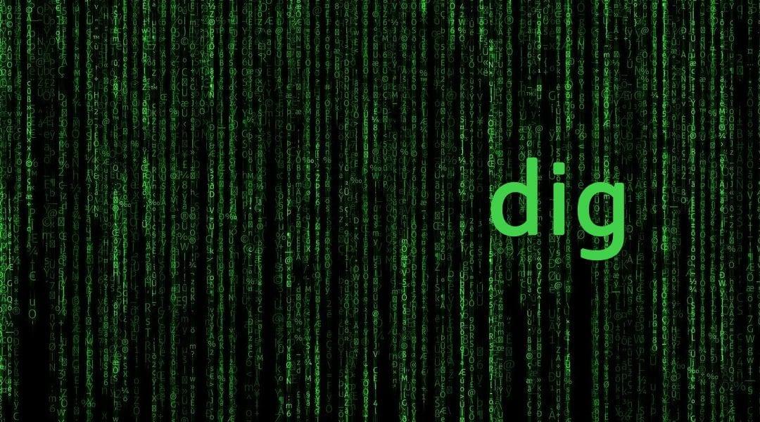 interogari DNS cu comanda dig